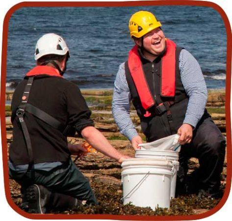 Shore-Seaweed-Unfolding-Health-Story